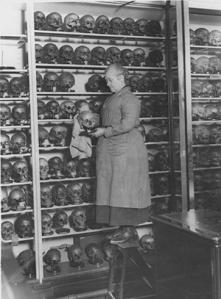 Hunterian bicentenary_skull_image