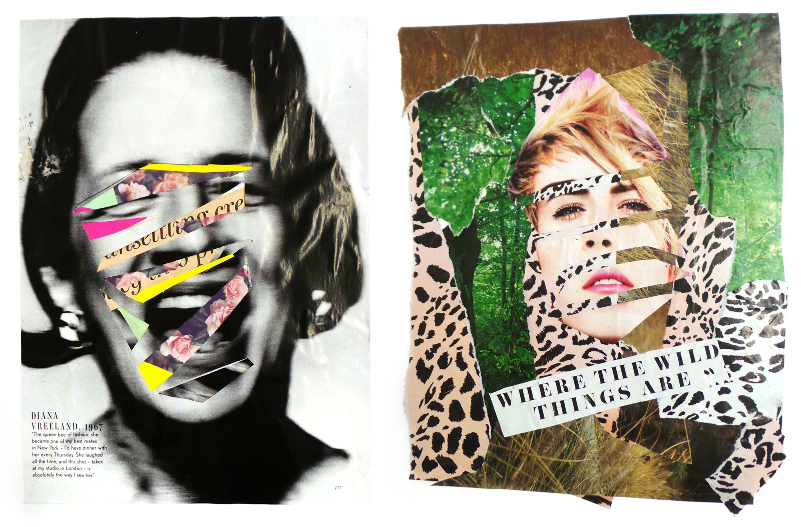5.Wild Collage Faces