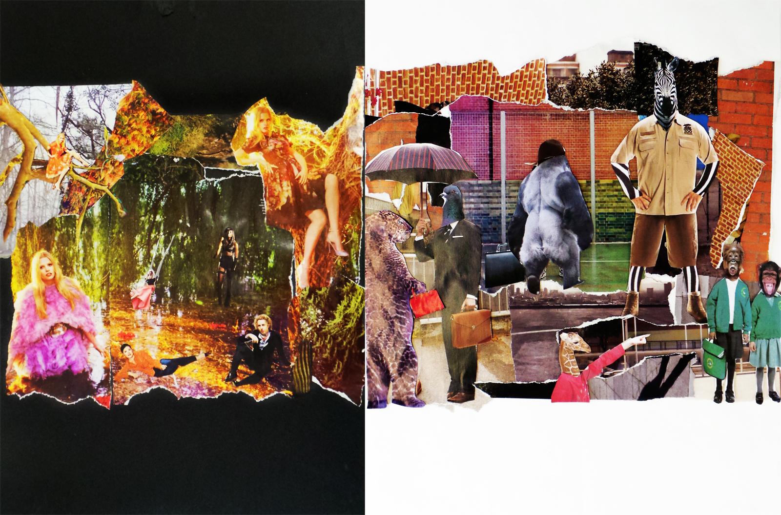 HumansVSAnimals Collages